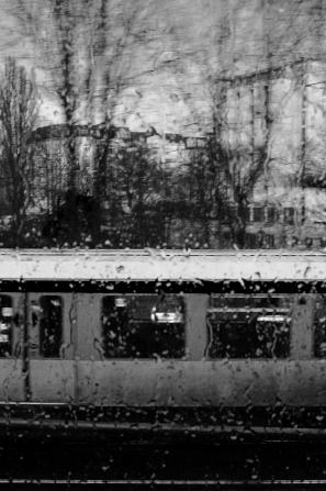 Back_rain01_web