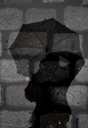 Back_rain02_web
