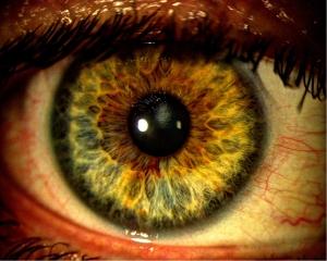 HDR_Eye