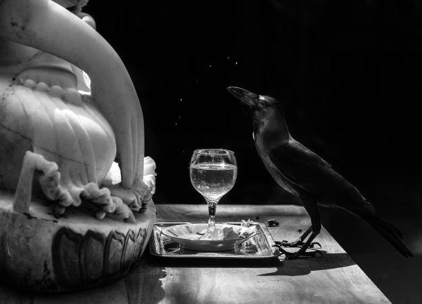 Raven with Buddha